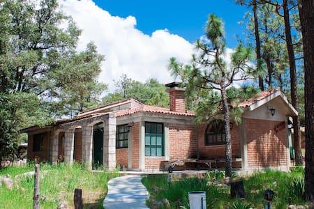 Cabaña # 6 (Durango)