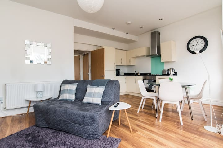 Cosy Apartment by Roath Park and Lake