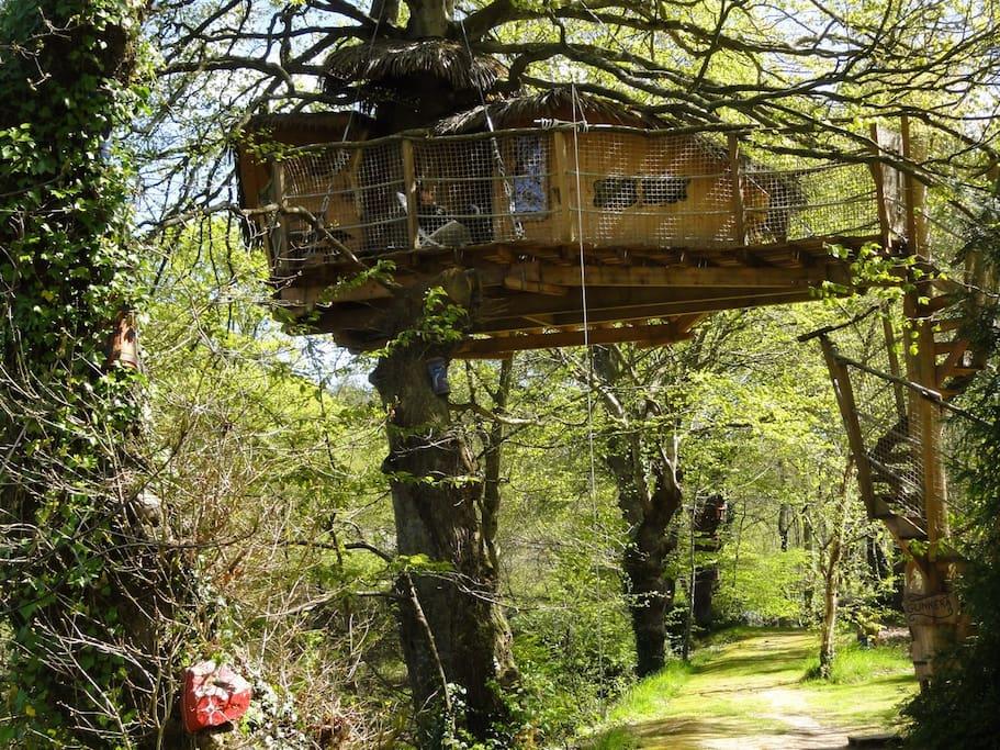 cabane dans les arbres gunnera treehouses for rent in pl h del brittany france. Black Bedroom Furniture Sets. Home Design Ideas