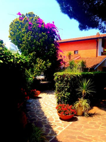 Villa Pia 600 meters from the sea - Marina San Nicola - Villa