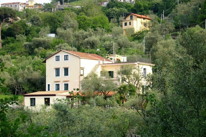Scenic Sea View Farmhouse in Sant'Agnello