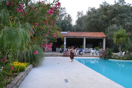 Portugal Eco Farm in Mountain Area - Casal da Senhora - Bed & Breakfast
