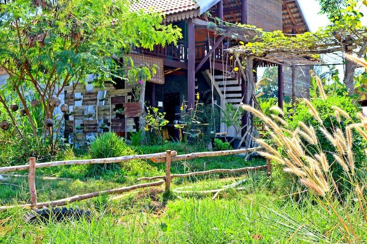 Farmhouse Organic Garden (Entire place)