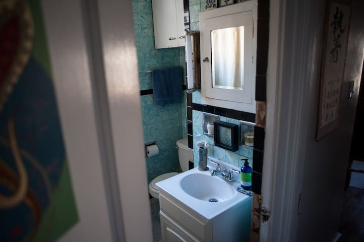 Our tiny little Pittsburgh bathroom.