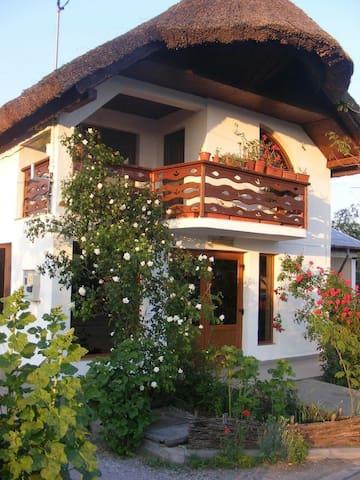 Casa Nicu Murighiol