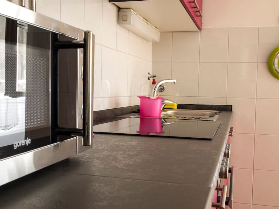 Big kitchen equipped with microwave and induction heater.