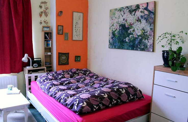 Cute little cottage with 2 cats - Galway - Stadswoning