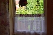 Widok z okna na parterze