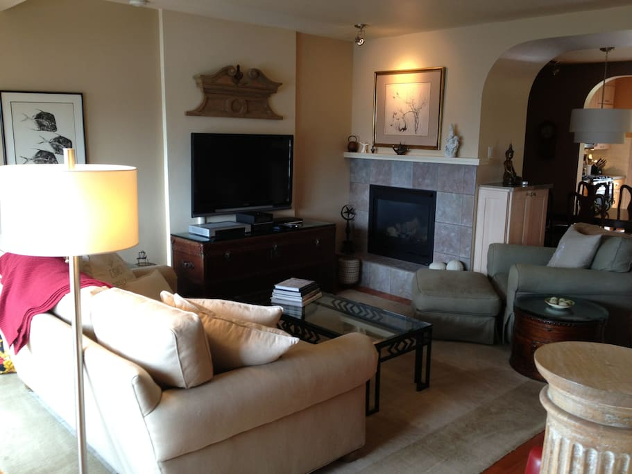 Ocean view living room with gas fireplace