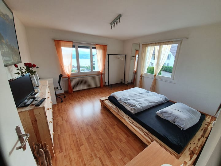 Large,bright room with lake view and free parking
