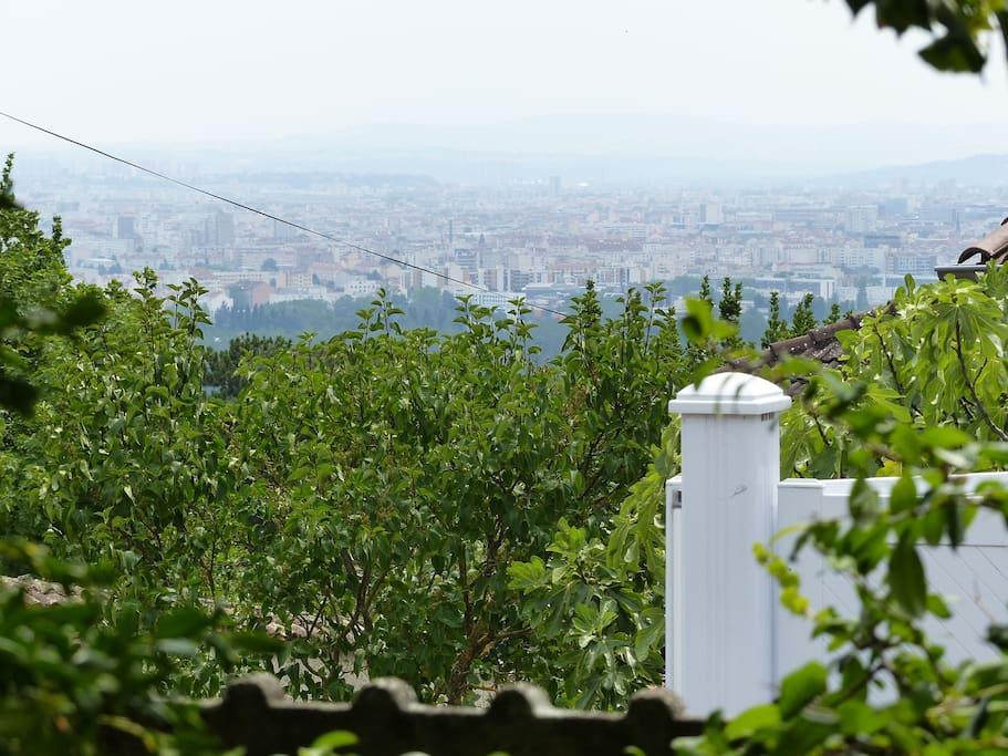 Vue de Lyon depuis le jardin