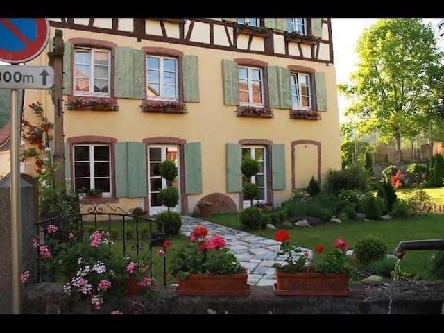 Appartement de charme - Soultzbach-les-Bains - House