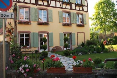 Appartement de charme - Soultzbach-les-Bains - 단독주택