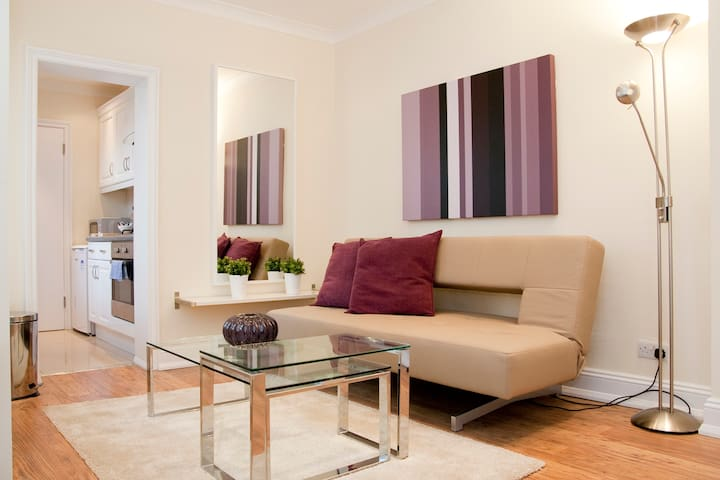 London Luxury Apartment#5 B Zone 1 On Promotion