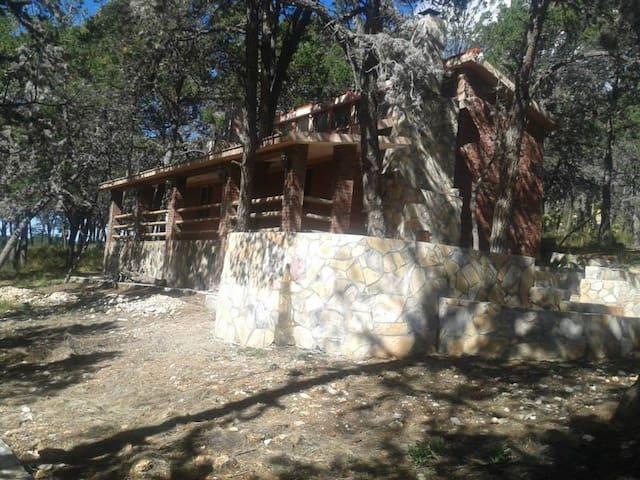 Cabañas Leonberg para 16 personas en San Antonio