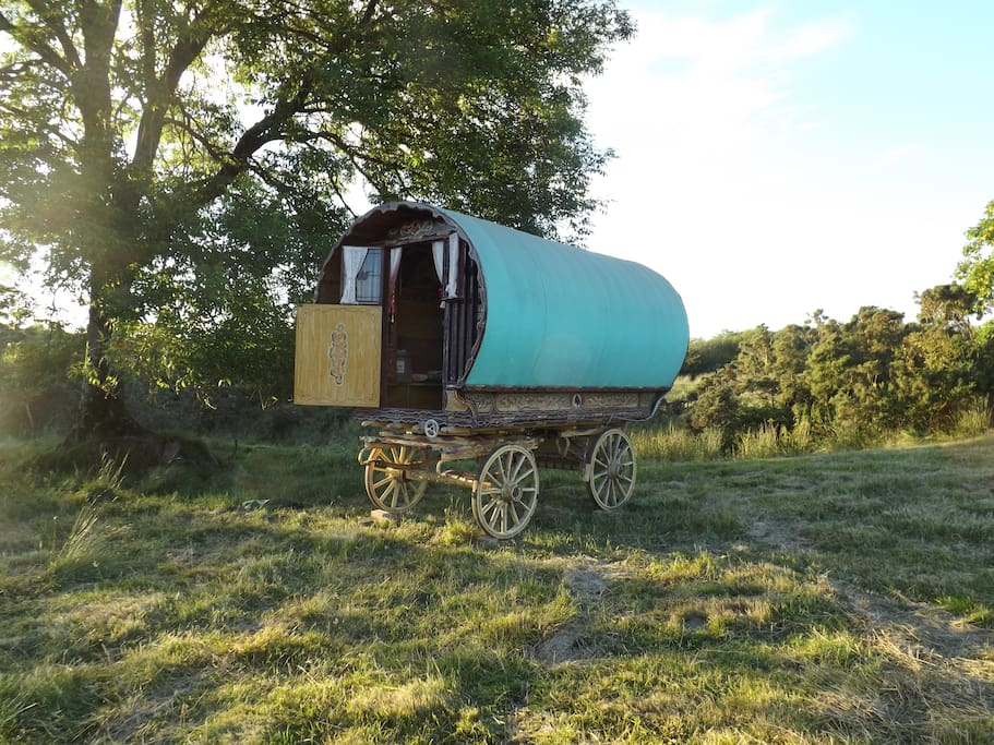 Living the good life in a secluded space on our eco friendly farm only 4 miles from the beautiful West Wales Coastline
