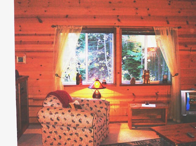 Cozy Cabin 1/2 acre Hot Tub,Pets OK