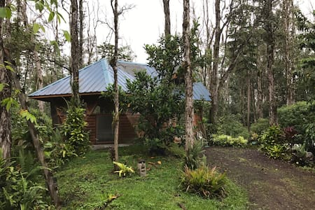 Artistic Off-Grid Forest Bungalow - Keaau
