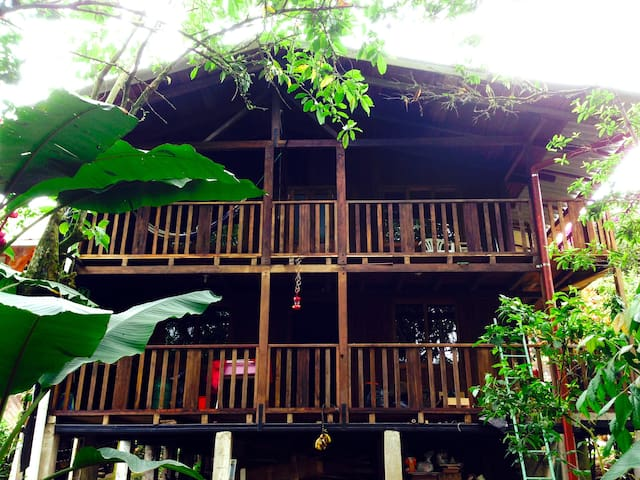 Cozy wooden house in Mindo - Mindo - House