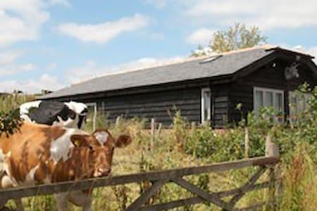 Bull Farm Studios - River Room  - Kings Worthy, Winchester - Byt