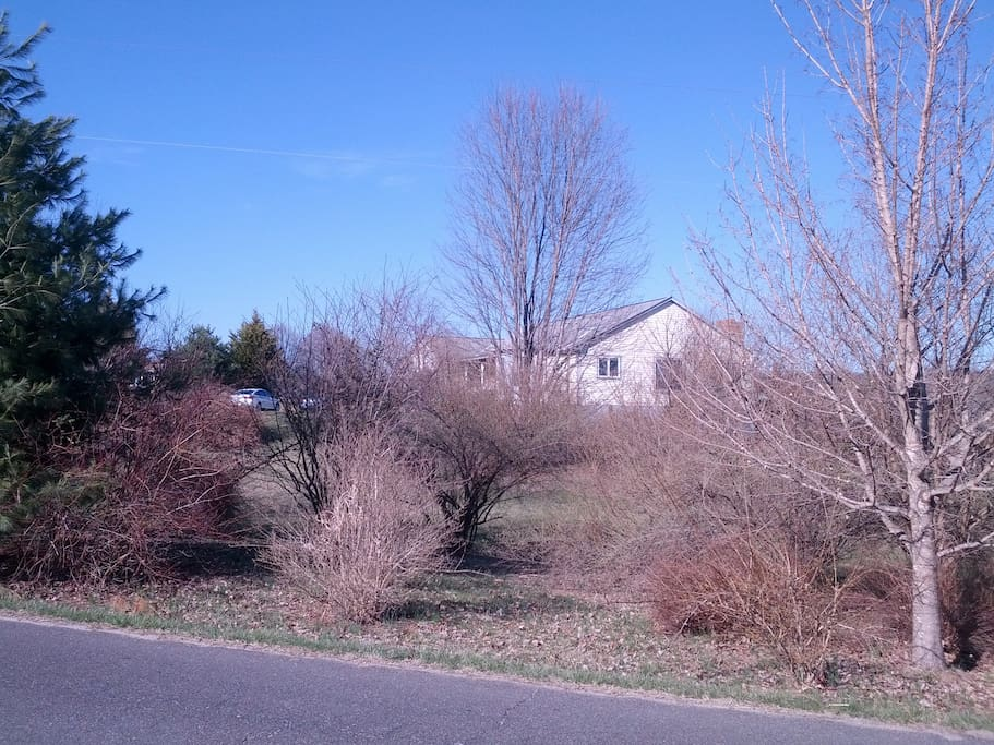 Approaching the house in the prelude to spring . . .