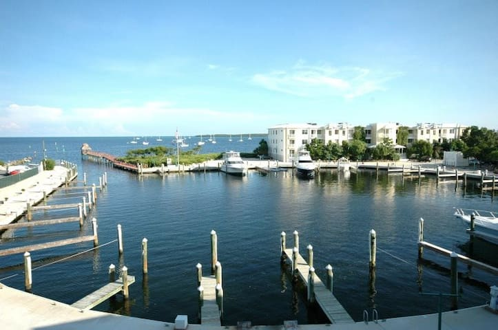 Breathtaking harbor and ocean view! - Key Largo - Villa