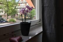 30 Minuten zur Documenta - Wohnung im Fachwerkhaus