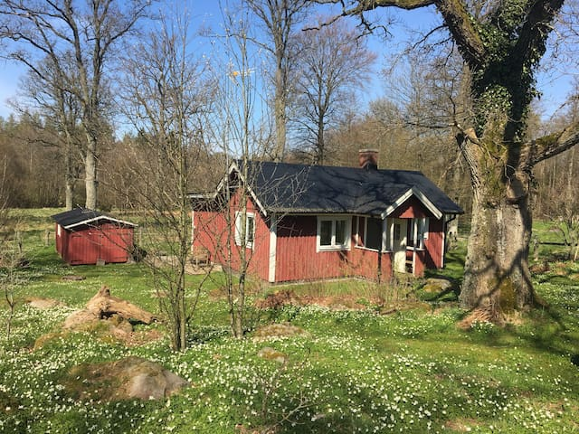 Small house on the countryside - Ljungbyhed - Haus