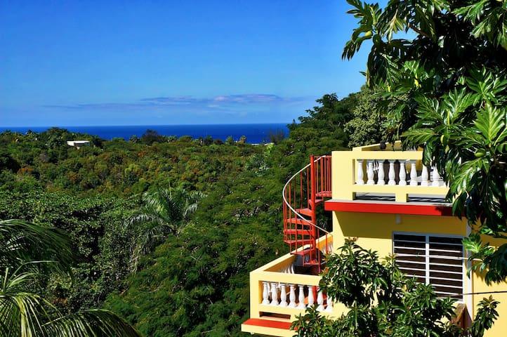 Amapola House -  Rincon villa near Puntas beaches!