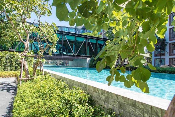清迈的Dcondo Ping泳池景观高档公寓