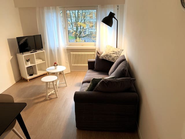 Central & nice furnished 2.5 room apartment