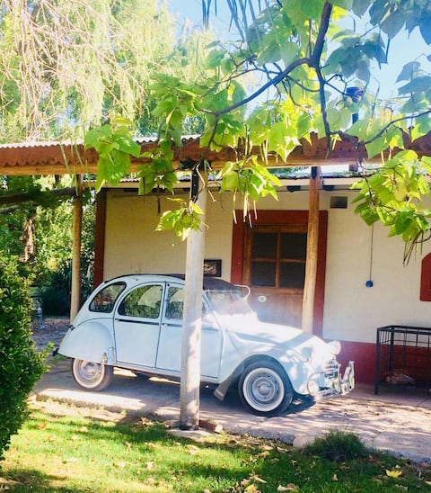 Casa Art Gallery - Cozy cottage on the vineyards