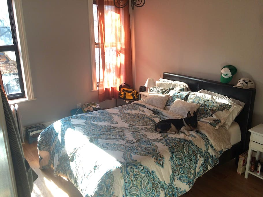 Spacious room with great sunlight (cute pup not included -- comforter will be washed before your stay + fresh linens provided). Door has a key-lock entry for additional privacy.