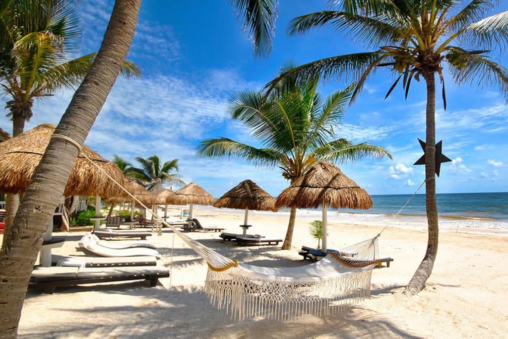 Relax at a Beach Club and Swim in the Clear Blue Caribean Ocean