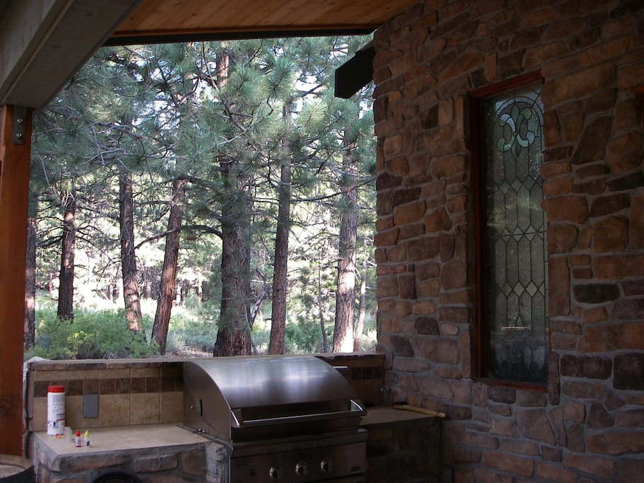 View in the back yard and part of the outdoor Patio/Kitchen