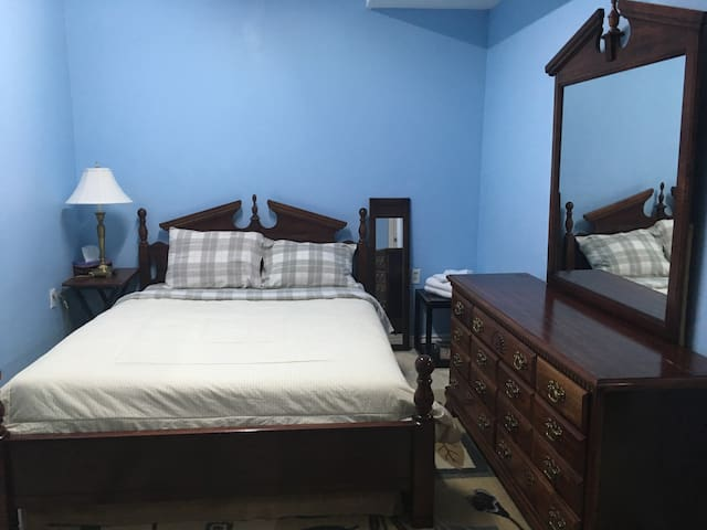 LARGE ROOM/LOWER LEVEL/ CLOSE TO CONGRESS/TRANSIT