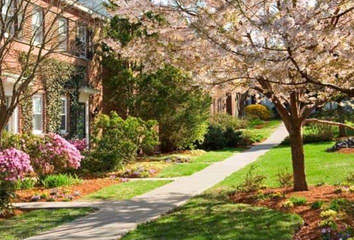 Beautiful, Quiet, and Safe! - Brookline - Apartamento