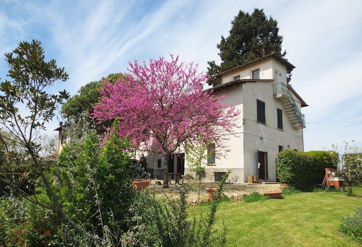 i Cipressi: casa nei colli Senesi