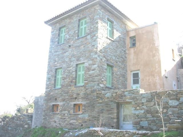 Stone house, big garden, near beach - Andros Stenies  - Talo