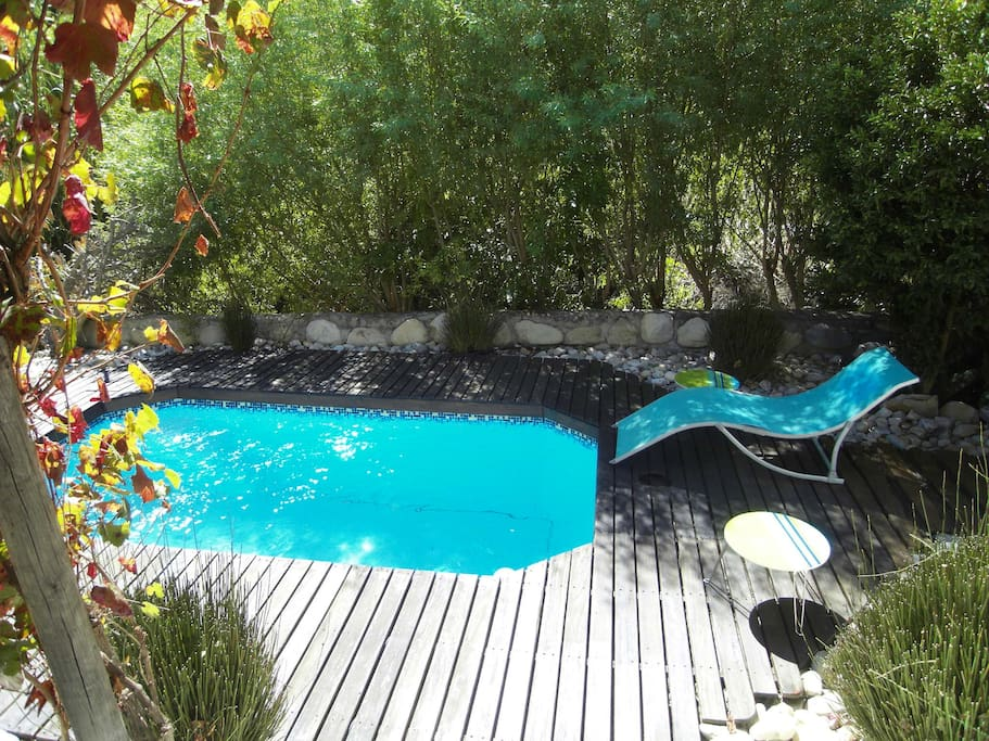 Sun deck and pool area, directly bordering the reserve.