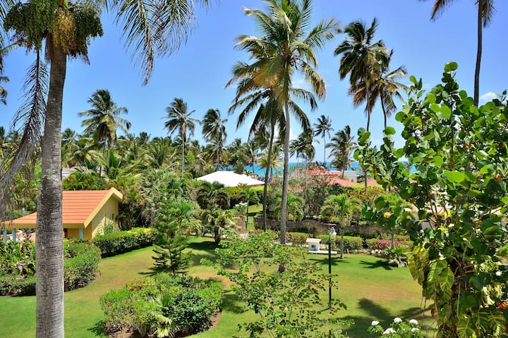 80m² luxurious apartment, beachside, oceanview - Cabarete  - Byt
