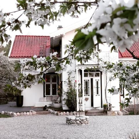 The main house, Villa Fredbo