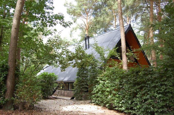 residence de saevelsberg in the forrest
