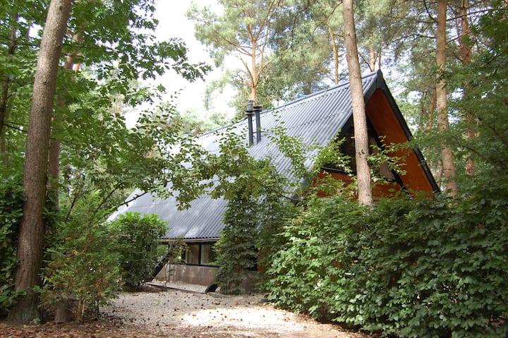 Bungalow De Saevelsberg in bos met veel privacy