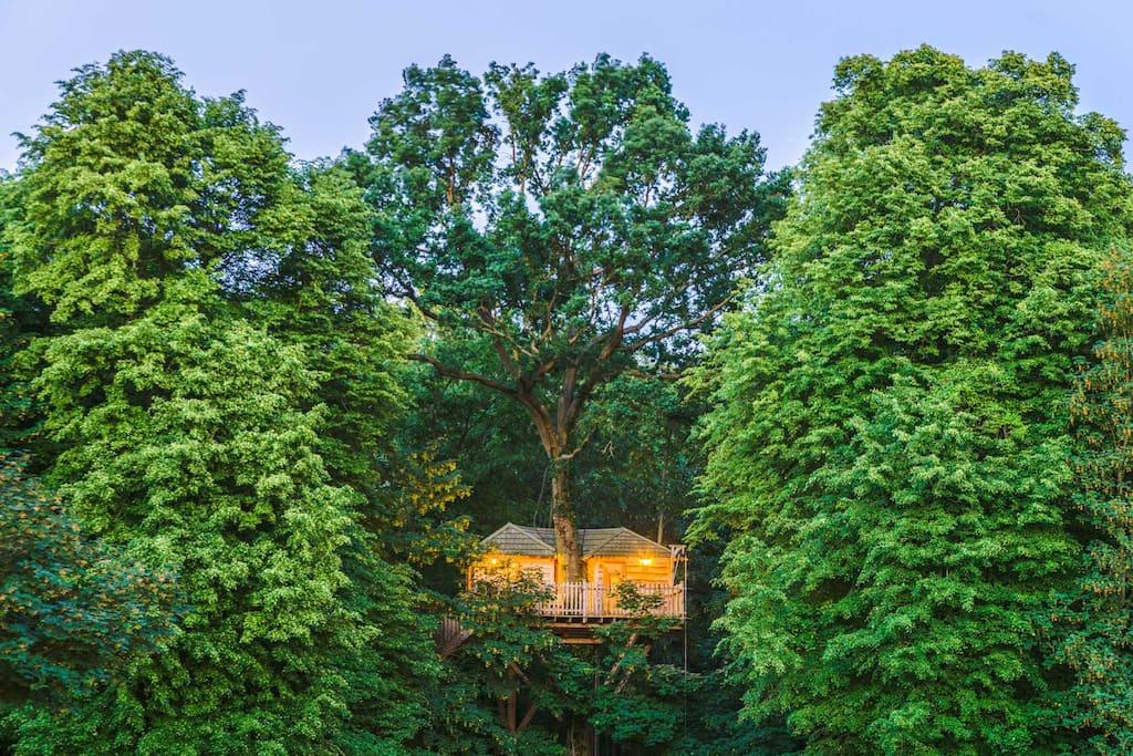 cabane cachette pour 5 personnes cabanes dans les arbres louer raray hauts de france france. Black Bedroom Furniture Sets. Home Design Ideas