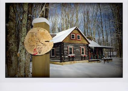 Charming Cabin on 5 Idyllic Acres - 戴维斯 - 小木屋