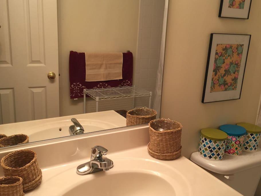 Bathroom View_2