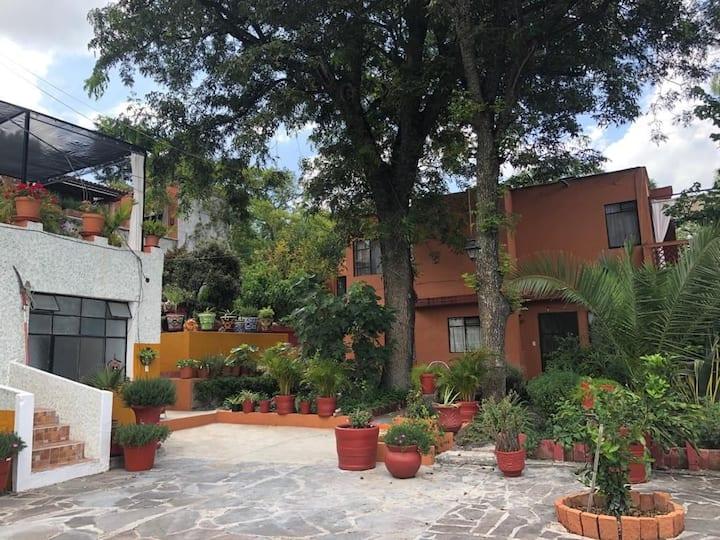 Cozy 2 bedroom appartement in San Miguel's heart