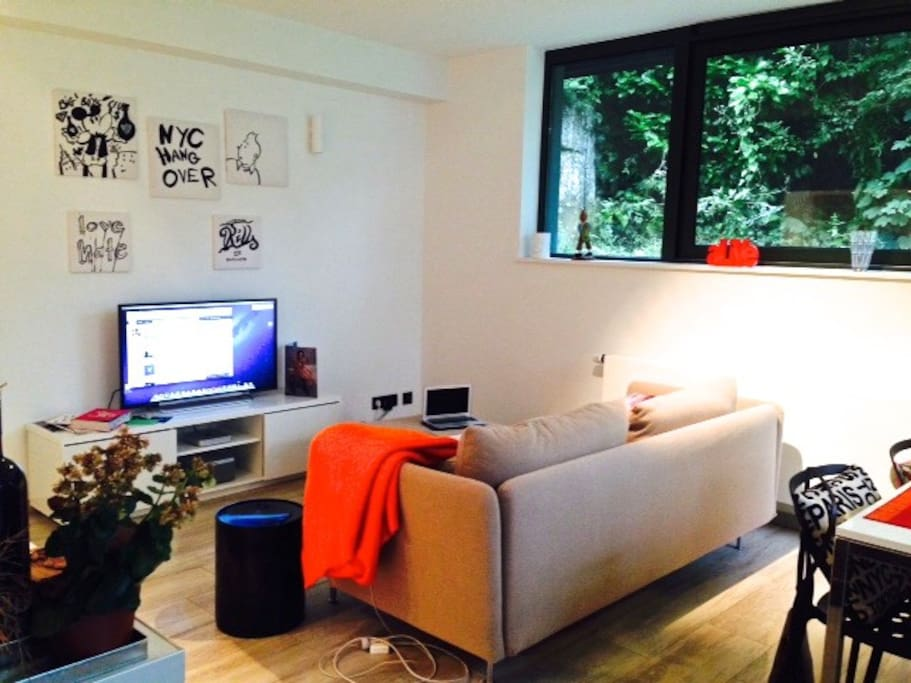 Mac TV, Loewe Sound Station, Comfortable Couch with Lounge