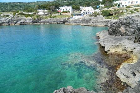 Grazioso appartamento per vacanze - Marina di Novaglie - Huoneisto